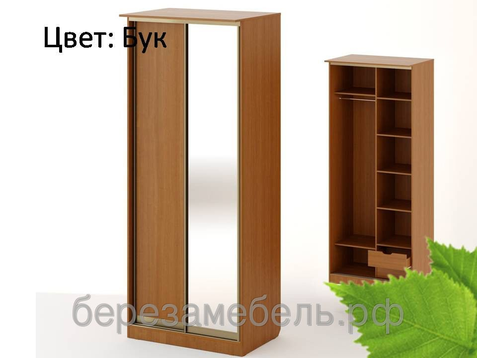 Шкаф купе ШК-09