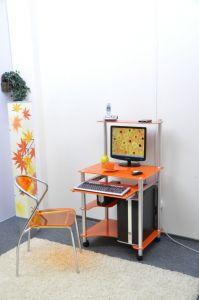 Компьютерные столы:Компьютерные столы из стекла:Компьютерный стол стеклянный G0018/G6